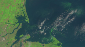 Landsat 8 Natural Colour image of Algal Blooms in Lake Erie acquired on 01 August 2014. Image Courtesy of NASA/USGS.