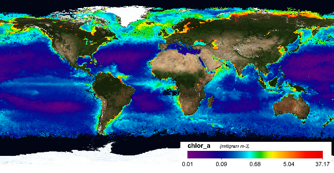 August 2009 Monthly Chlorophyll-a Composite; data courtesy of the ESA Ocean Colour Climate Change Initiative project