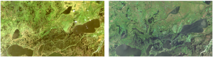 Lost Lake Area of Louisiana, USA. Landsat 5 image from 1985 on left, Landsat 8 from 2015 on right. Data courtesy of NASA/USGS.
